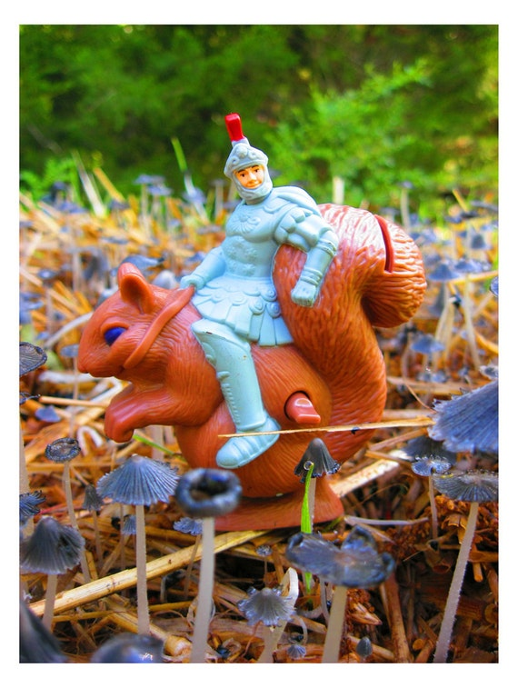 Riding the Friendly Squirrel - 18x24 Fine Art Nature Photograph -  A Knight on a Giant Squirrel Amidst a Blue Mushroom Forest