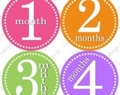 ON SALE Monthly Onesie Stickers... Girl Fun Colors...fast shipping...original seller of onesie stickers