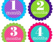 Monthly Onesie Stickers... Sweet Girly Colors...Fast Shipping