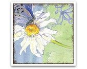 20% OFF - Pretty Blue Daisy & Butterfly Coaster