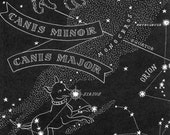 Canis Major Large Dog - Canis Minor Small Dog Night Sky Star Chart Map  - Southern Stars Constellations Vintage 1948