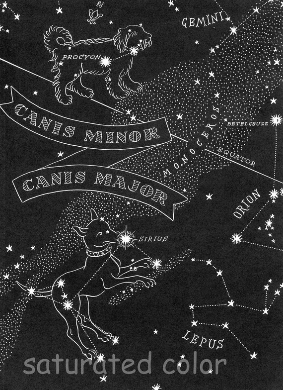 canis major large dog canis minor small dog night sky star