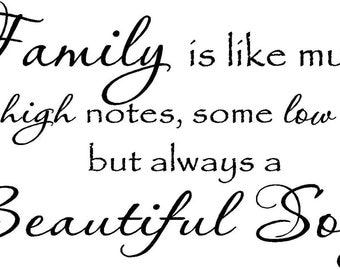 Family is like music some high notes some low notes but always a beautiful song ...vinyl lettering...