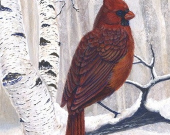 Christmas Card - Cardinals and Birch