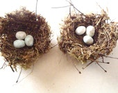 """Country Cottage birds nests - 3"""" nests w/ white eggs, set of TWO"""