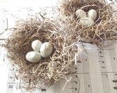 """Bird Nests Handmade Shabby Chic - 3"""" spanish moss nests w/ white eggs, set of TWO"""
