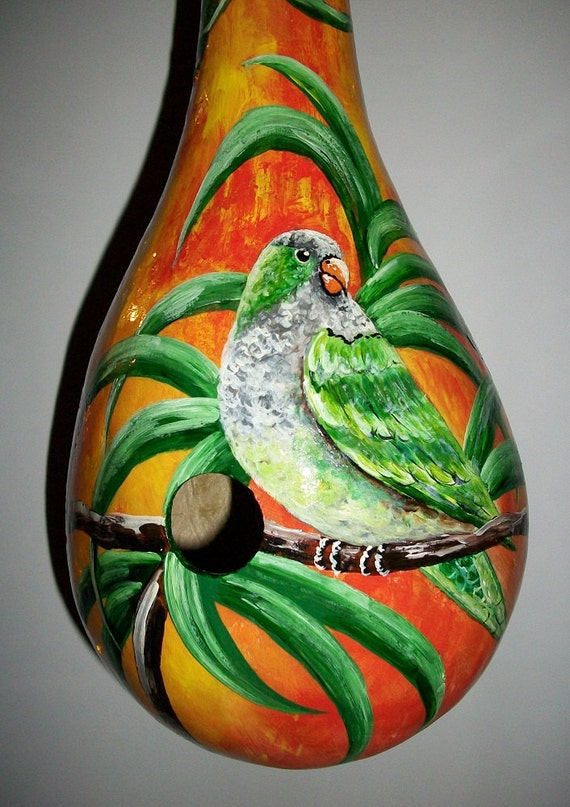 Monk Parakeet Gourd Birdhouse Large Gourd / Hand Painted Birdhouse Gourd Ready to Ship