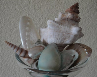 Glass Candle Holder with Shells