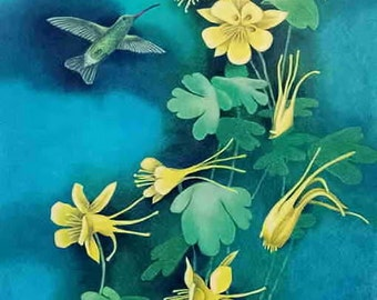 Hummingbird and Columbine Flowers, limited edition print from a watercolor, 10X16