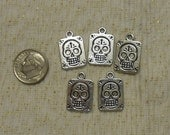 Silver Skull Charms