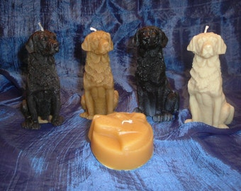 Lab dog candle your choice of color