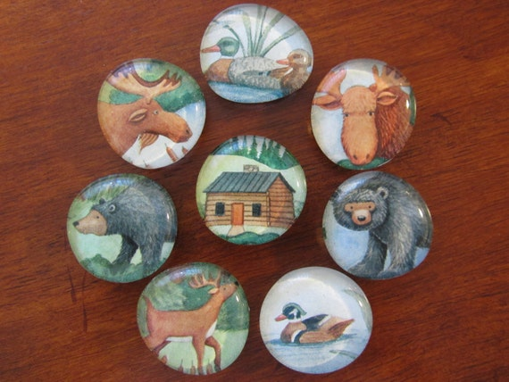 SALE Forest Friend Magnets
