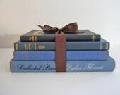 Vintage Blue Books Bundle Sara Teasdale Dylan Thomas and Bird Book Classics