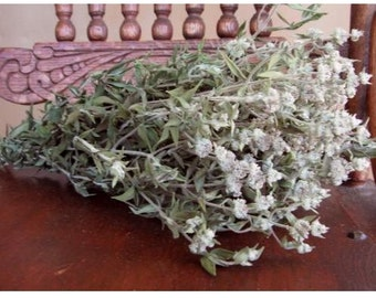 Dried Flowers  FRAGRANT Natural Dried Gray Green MOUNTAIN MINT tl Filler Flowers Country Prim Decorating Wedding Rustic Floral