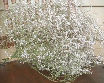 DRIED Sea Lavender FLOWERS Country Farm Decorating Prim Crafting Wedding shower Wreath making Shabby, rustic, floral Dried Neutral color