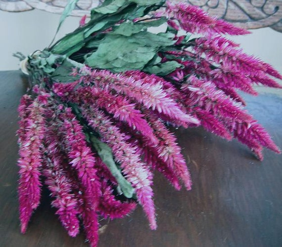 DRIED FLOWERS All Natural Dried Flowers Celosia Pink rose  Craft Decor Prim Floral Wedding Shabby Country