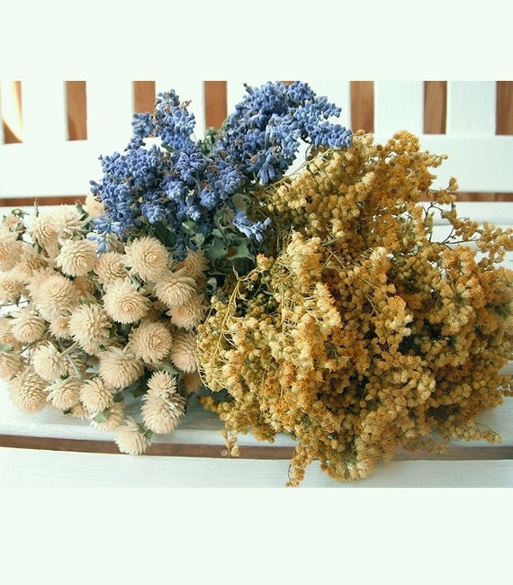 Dried Flowers  EARTHTONE COLLECTION Floral Lovely for Wedding, Prim, Craft, Shabby Chic,...