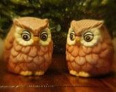 Shake it like a salt shaker.... Vintage ceramic owl salt & pepper shaker set