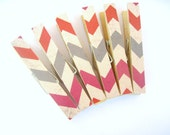 Reserved--Rustic Chevron Clothespin Magnets