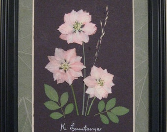 Pressed Flower Picture No. 138