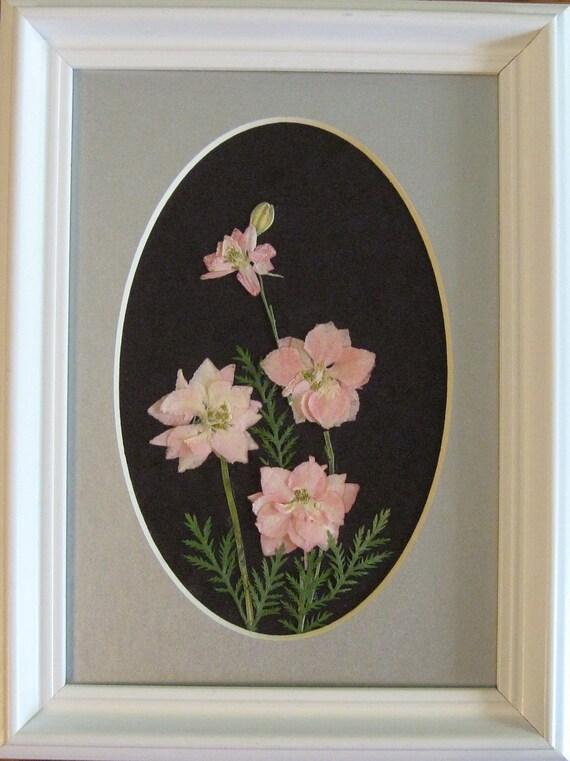 Pressed Flower Picture (Pink Larkspur)  No. 160