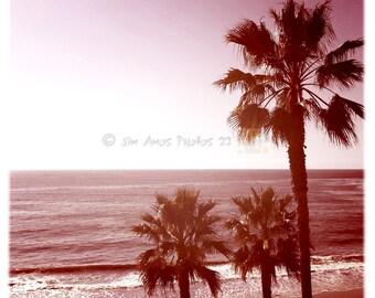 Laguna Beach Palms - Square California Beach Photo, square photo, instagram, wall art, beach house decor, orange county, California
