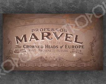 Wizard of Oz Professor Marvel Small Banner