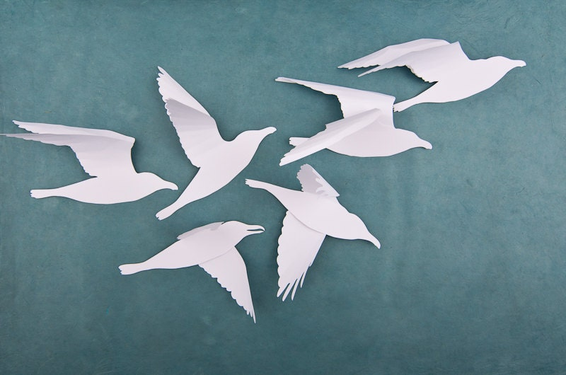 A Flock Of Seagulls White Bird Wall Art 6 White Wall Birds