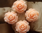 Limited discount Buy 1 Get 1 Free 20pcs Wholesale Beautiful Colorful Rose Flower Resin Cabochon  --20mm(CAB-BS-6)
