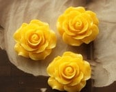 Limited discount Buy 1 Get 1 Free 20pcs Wholesale Beautiful Colorful Rose Flower Resin Cabochon  --20mm(CAB-BS -23)