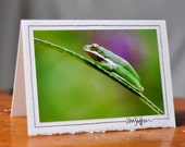 Georgia Fields, Set of 4 Photography Greeting Cards
