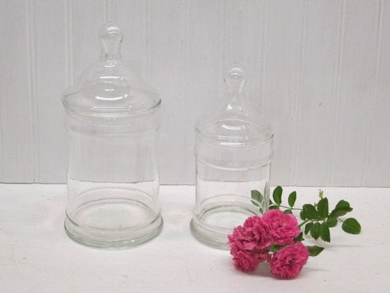 Set of 2 Clear Glass Cylinder Shaped Apothecary Jars Terrariums