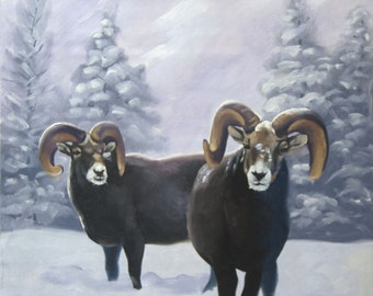 Big Horned Sheep oils on canvas wildlife painting 24x20 by RUSTY RUST / S-58