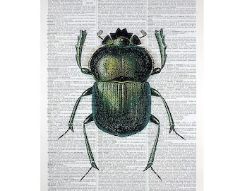 Green Beetle Print on a Vintage Book Page