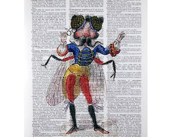 Fly Mardi Gras Costume Print on a Vintage Dictionary Page
