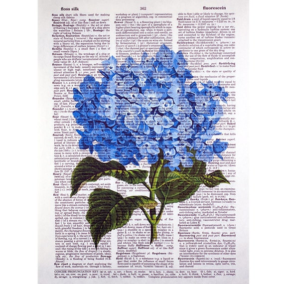 Blue Hydrangea on a Vintage Dictionary Page