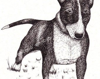 DIGITAL Bullterrier drawing-postcard sized instant download-SUPPORT the Soi Dog Foundation