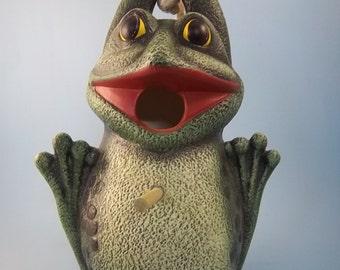Froggy, The Frog Bird House