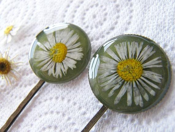 Pressed Daisy, Hair Pins,  Bobby Pin, Set of 2, Botanical, Woodland, Nature, Eco Friendly