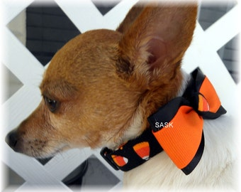 Dog Collar Candy Corn Halloween Orange Black w Ribbon Bow Tie Adjustable Collars D Ring Choose Size Ghost Goblins Scary Accessory Pet Pets