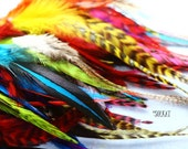 Feather Craft Supplies Colorful Craft Feathers Mixed Colors Patterns Arts and Crafts Feathers Jewelry Making Wholesale Bulk Cheap - 50