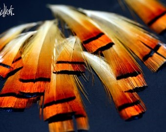 Short Orange Pheasant Feather Golden Cheap Craft Feather Craft Supplies Commercial Supply, Natural Orange Feather Supplies  12