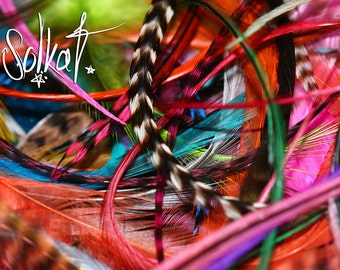 Feather Craft Kit Jewelry Feathers Real Craft Feathers Colors Bulk Rooster Feathers for Crafts Jewelry Making Earrings Hair Accessories 100