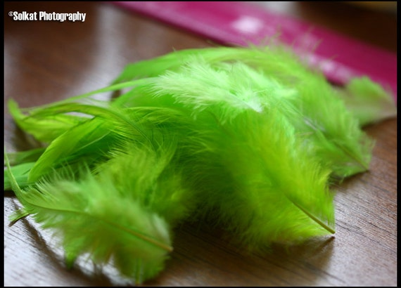 Craft Feather Supply Bright Green Feathers Rooster Saddle Hackle Craft Supplies Feather Plume Fluffy Wide Real Craft Feathers, 12