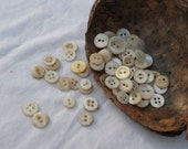 Lot of 70  Vintage Shell MOP buttons