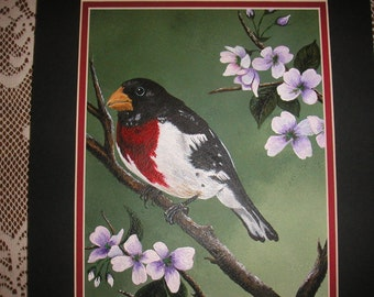 Rose Breasted Grosbeak in Dogwood Tree - wildlife, nature, feathers, bird painting, flowers, red, black, purple, green