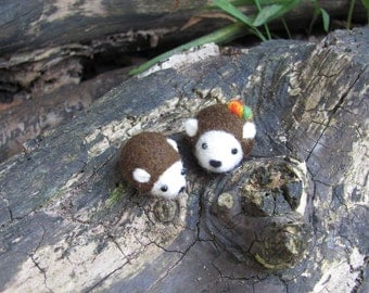 two tiny hedgehogs