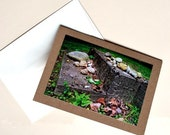 Notecard, Photo, Stone Steps