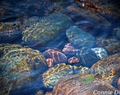 rocks - water - stream - mountains - creek - home decor - tranquil - fine art photography - The River's Mystique, 13x19 Color Photograph
