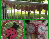Personalized Name Banner....Lady Bug....Pink and Lime Green